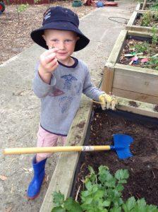 frankston house gardening